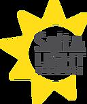 salt and light logo